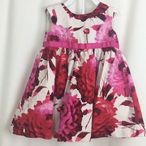 Baby Gap Pretty in Pink Dress